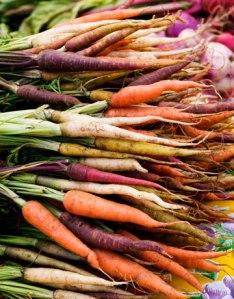 multi-colored-carrotsjpg-lg